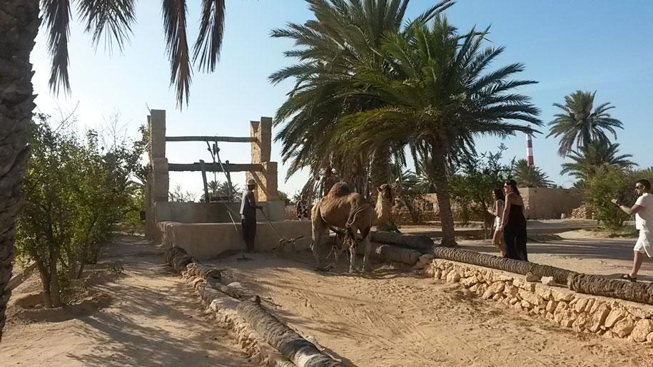 Достопримечательности острова Джерба - тунисская деревня