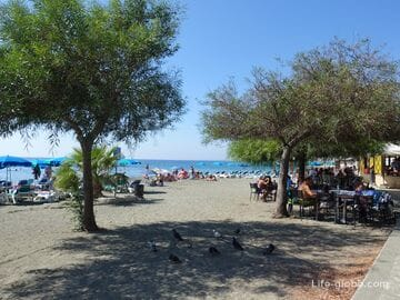 Akti Olympion Beach - the central beach of Limassol