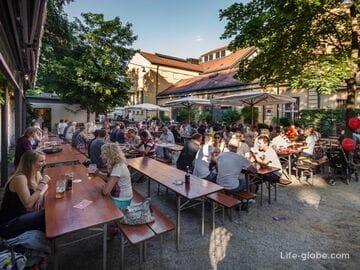 Пивные сады в Мюнхене (с фото, адресами и сайтами)