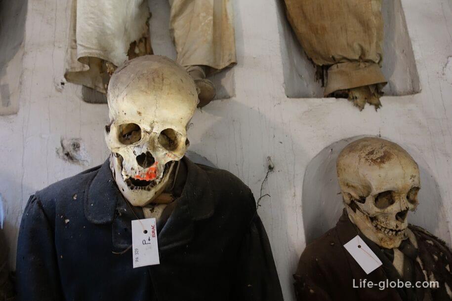 Музей мертвых