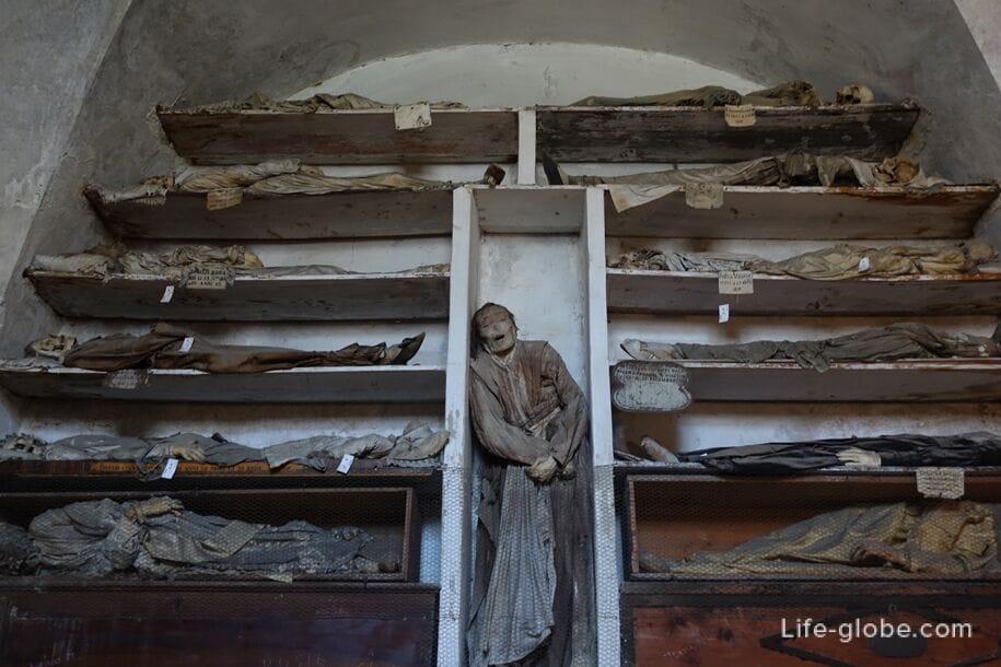 Музей мертвых фото