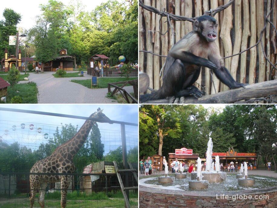 Жизнь в Краснодаре - парки Краснодара