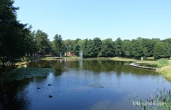 City park of Zelenogradsk. Tortilin pond, Zelenogradsk