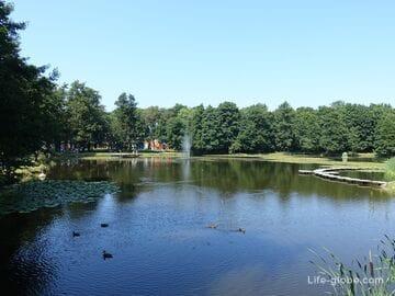 Городской парк Зеленоградска. Тортилин пруд, Зеленоградск