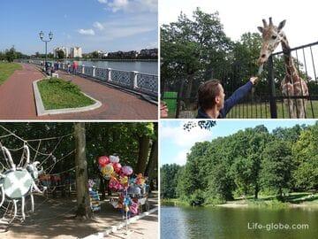 Парки и озера центра Калининграда