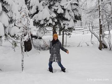 Самостоятельно в Красную Поляну (Эсто-Садок) - пошаговая инструкция по организации поездки (отдыха)