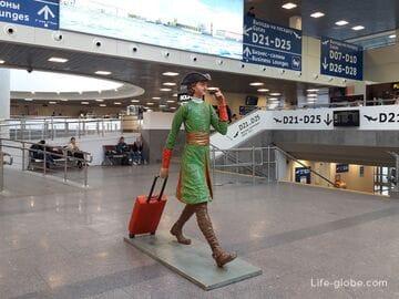 В Санкт-Петербург из Москвы, как добраться быстро и комфортно (все способы с сайтами покупки билетов)