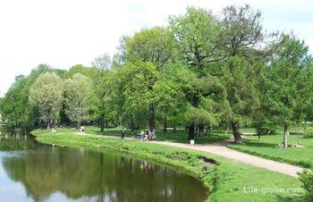 Tauride Garden in Saint Petersburg (+ garden greenhouse)