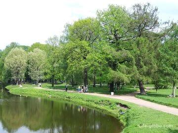 Таврический сад в Санкт-Петербурге (+ оранжерея сада)