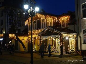 Зима в Зеленоградске. Новогодний Зеленоградск