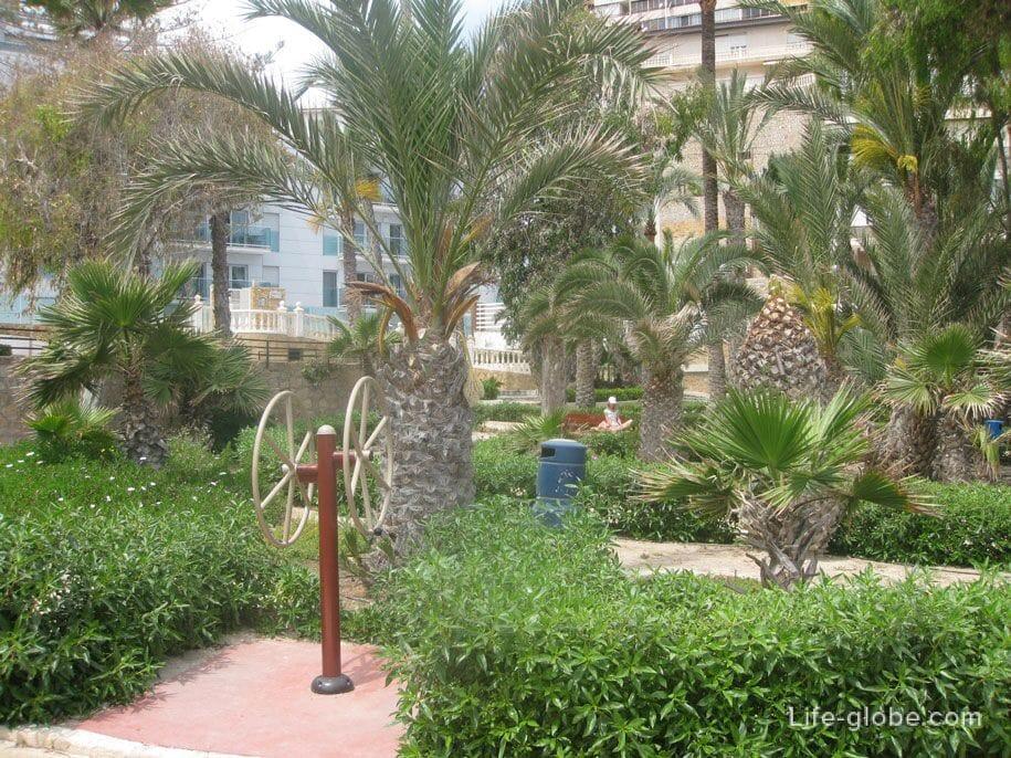 Парк у пляжа Пониенте, Бенидорм