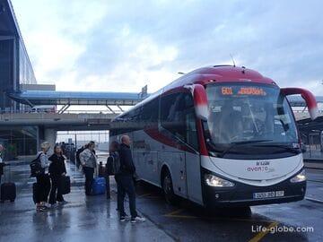 Как добраться в Марбелью из Малаги (аэропорта и центра города)