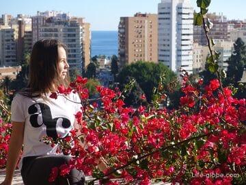 Экскурсии в Малаге от местных жителей