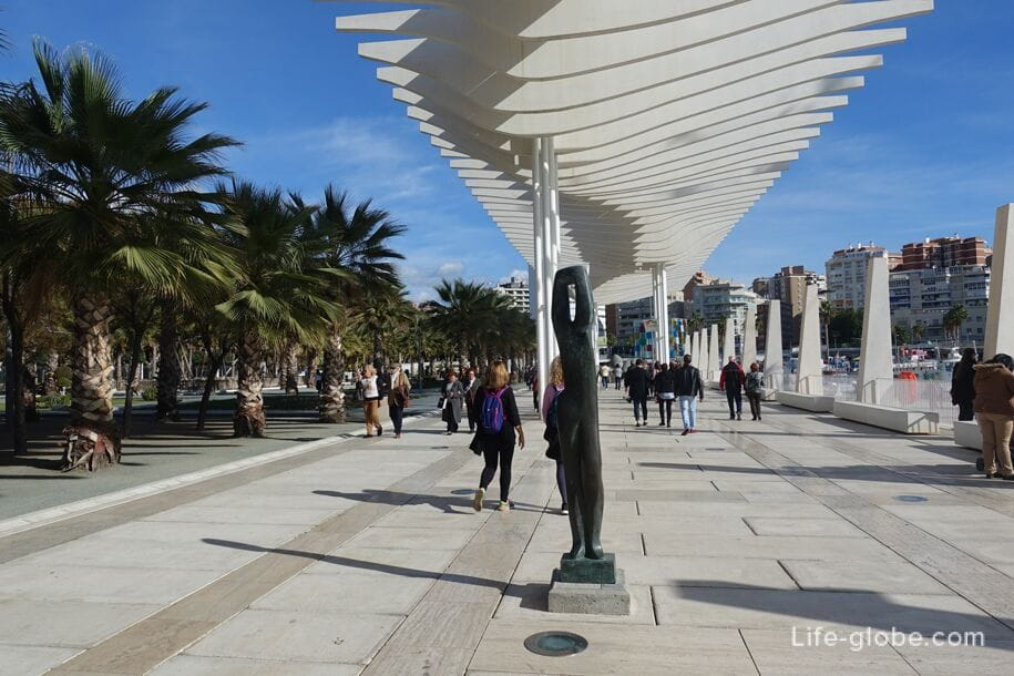 Palm Grove of Surprises, Malaga