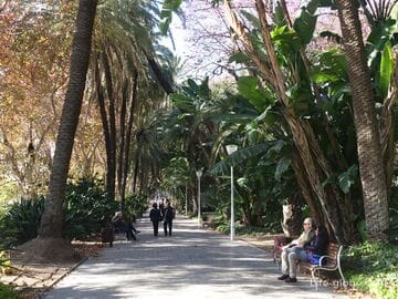 Parque Malaga - central to Malaga and one of the largest in Europe