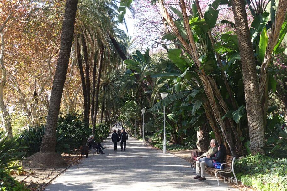 Парк Малага (Parque de Malaga)