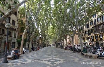 Бульвар Рамбла, Пальма-де-Майорка (La Rambla de Palma)