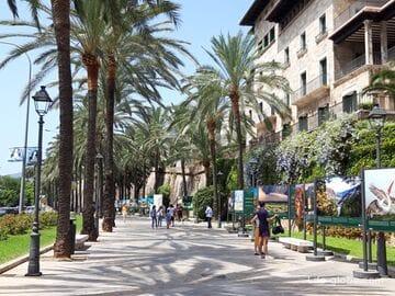Пасео Сагрера, Пальма, Майорка (Passeig Sagrera)