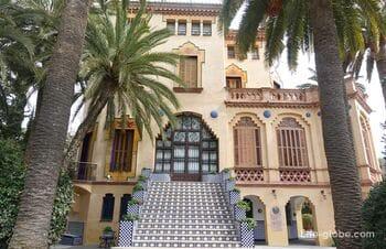 Дом Бонет и старое оливковое дерево - то, что стоит увидеть в Салоу