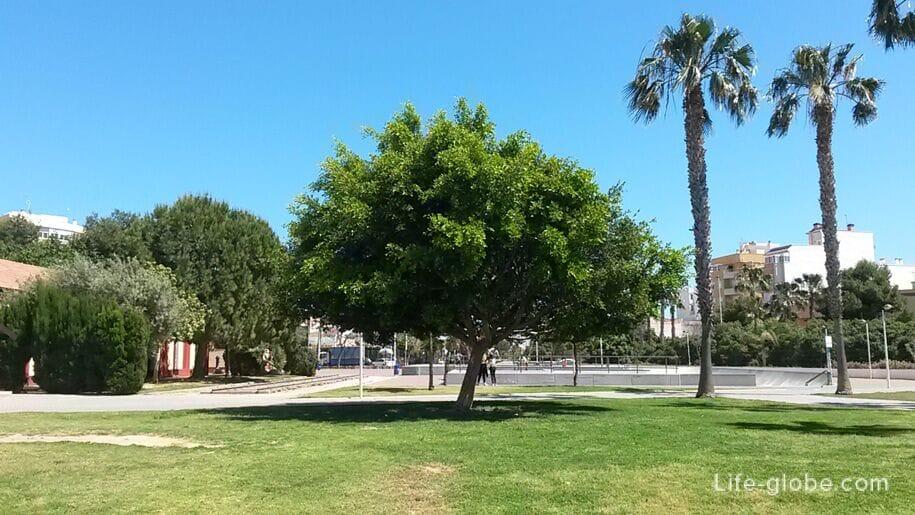 Парк в районе Асекьон, Торревьеха