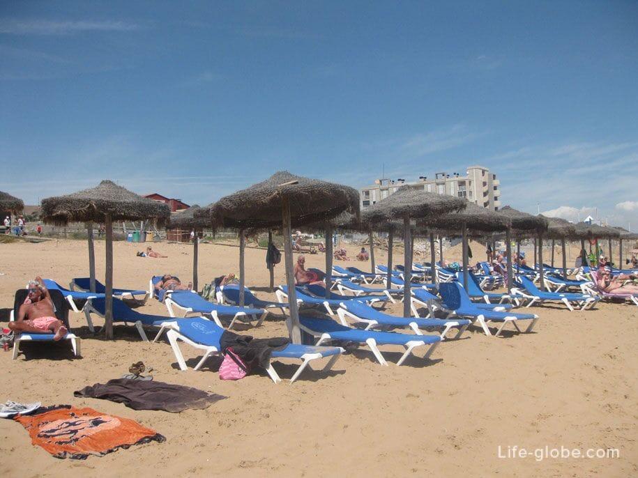 Шезлонги и зонты от солнца на пляже Ла Мата