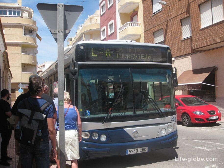 Автобус Ла Мата - Торревьеха