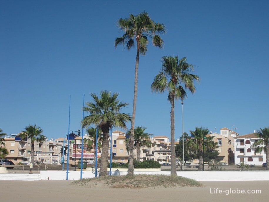 Пальмы на пляже Науфрагос, Торревьеха