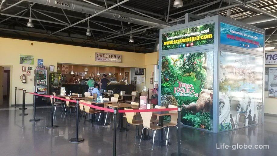 Кафе на автостанции в Аликанте