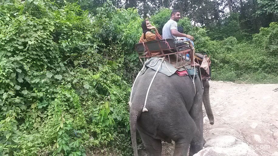 Elephant riding, Thailand
