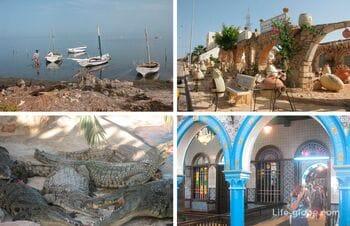 Sights in Djerba, Tunisia!