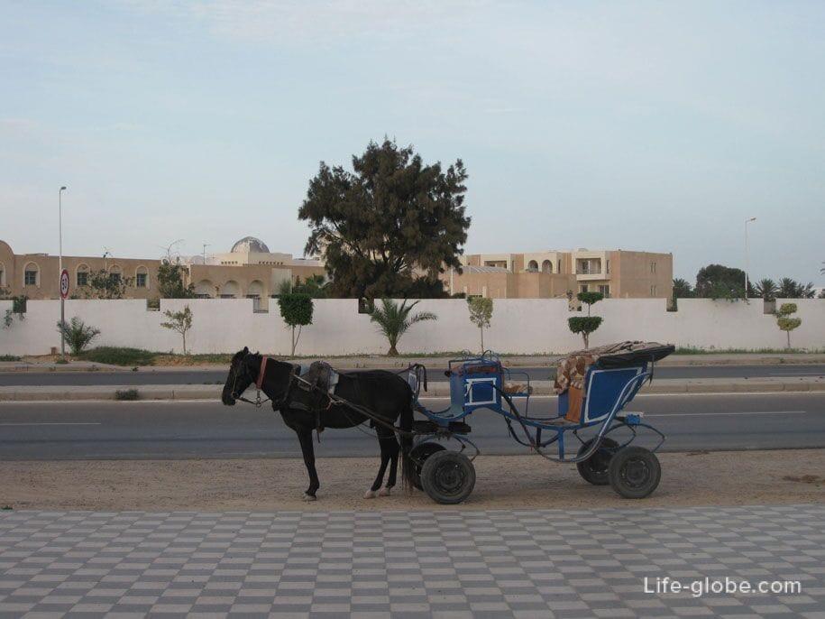 In the streets near the hotel Djerba Plaza, Tunisia