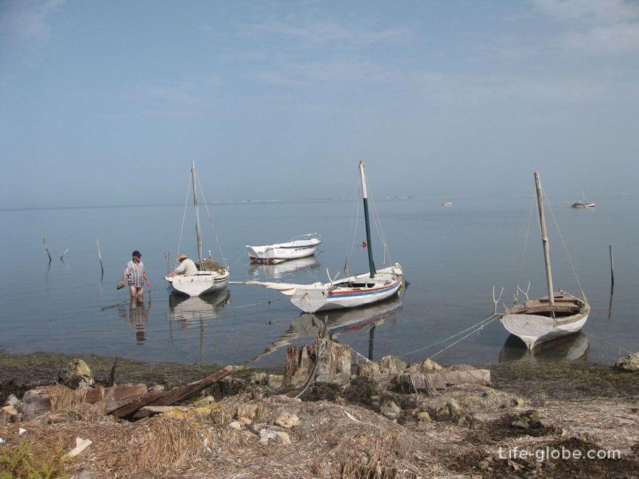 тунис остров джерба фото