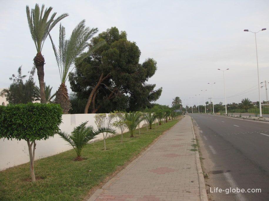 тунис джерба температура
