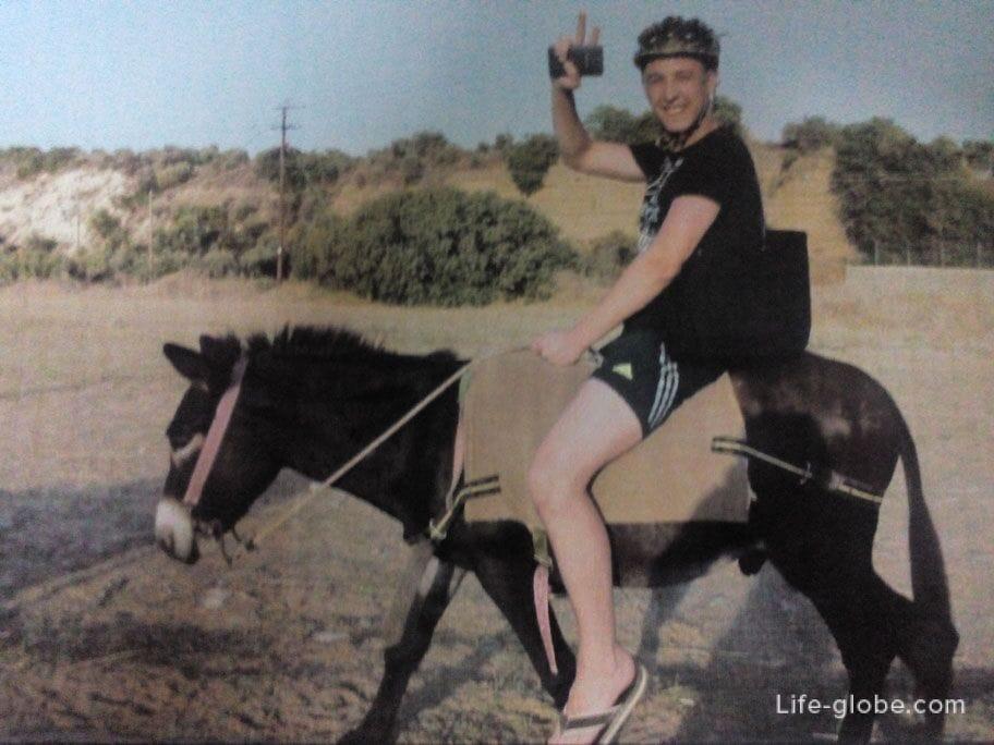 excursion - donkey riding Cyprus