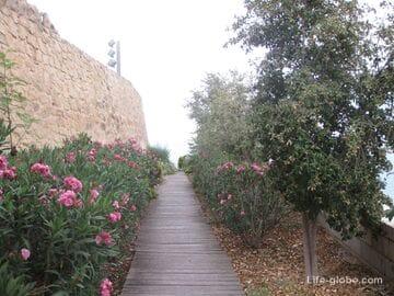Парк де ла Ерета (Ereta Park) в Аликанте