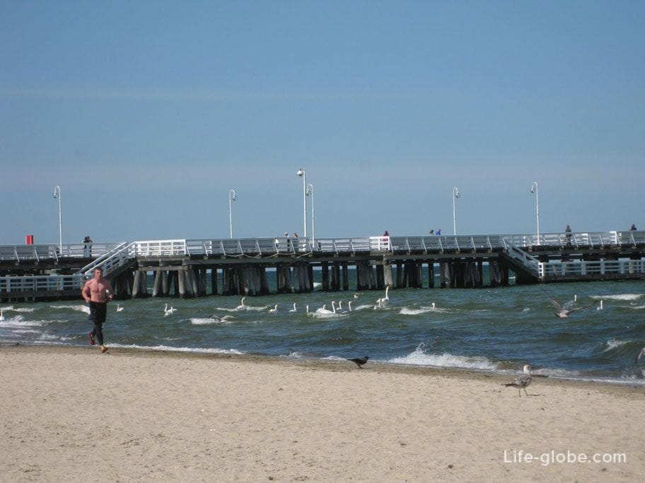 jogging along the sea line