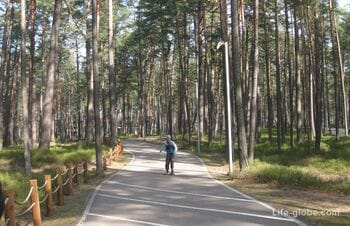 Дзинтари парк в Юрмале (Dzintaru Mezaparks) - идеальное место для семейного отдыха