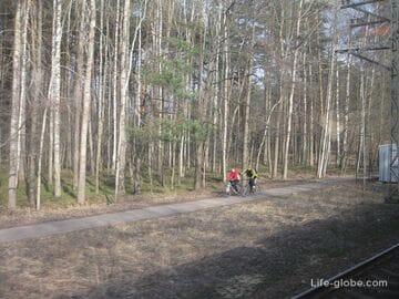Как самостоятельно добраться в Юрмалу из Риги