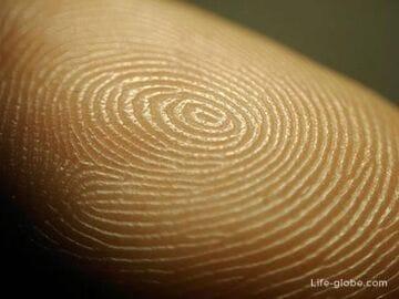 Отпечатки пальцев при получении шенгенских виз. Личный опыт
