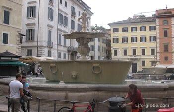 Палаццо Фарнезе и фонтаны в виде цветов Ириса на площади Фарнезе, Рим, Италия