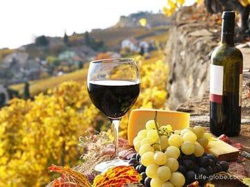 Где купить и как выбрать качественное вино в Испании