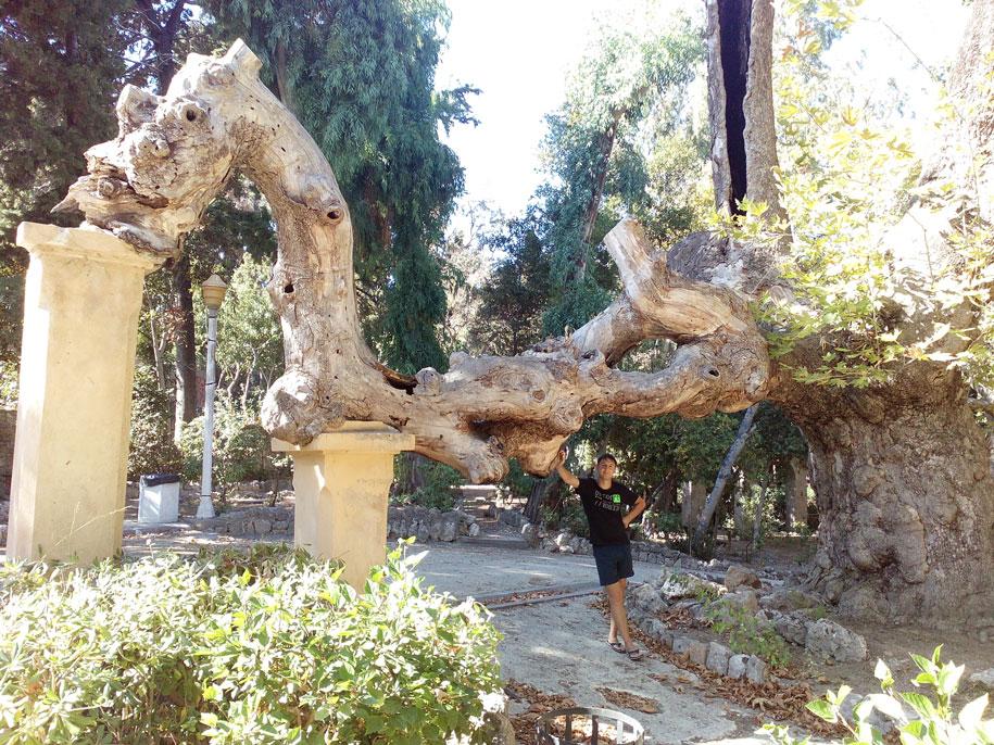 Rodini Park, Родос, Греция