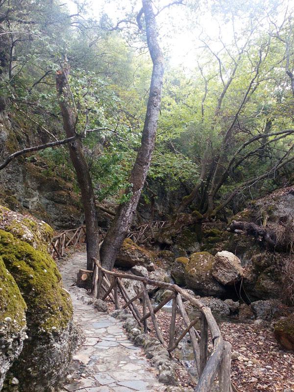 Долина Петалудес, Родос