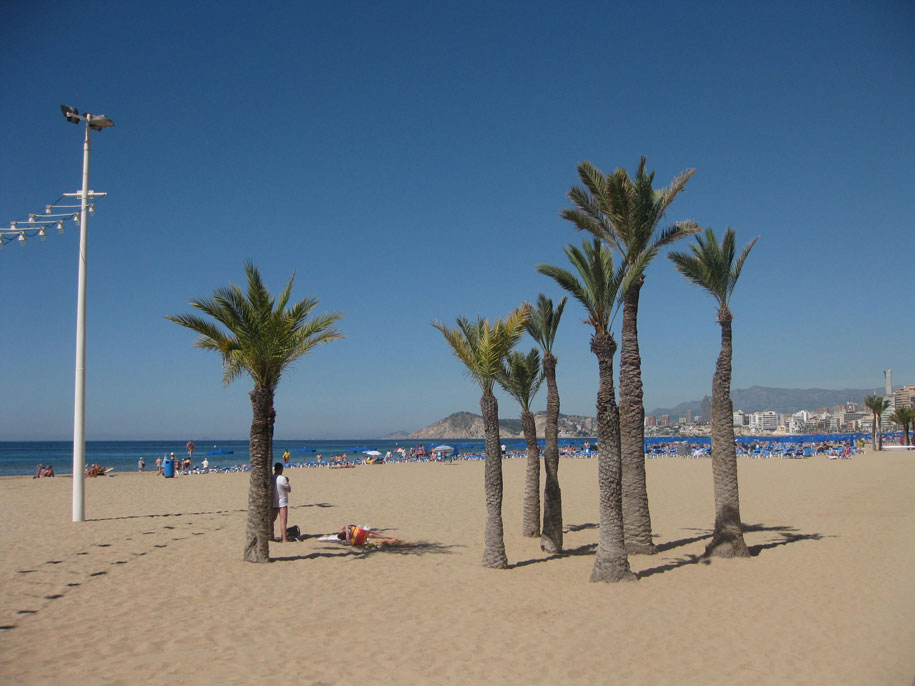 Пальмы на пляже Леванте, Бенидорм