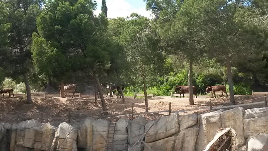 Парк развлечений Терра Митика в Бенидорме