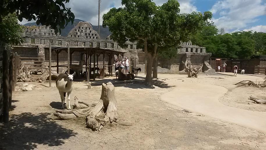 Природный парк в Бенидорме