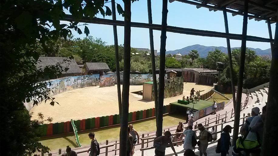 Арена в парке Терра Натура, Бенидорм