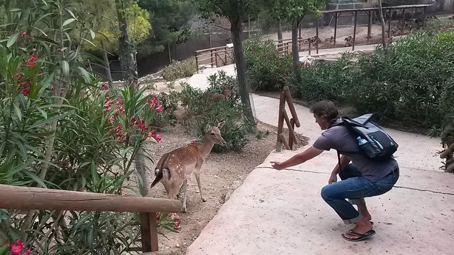 Контактный зоопарк, Терра Натура, Бенидорм