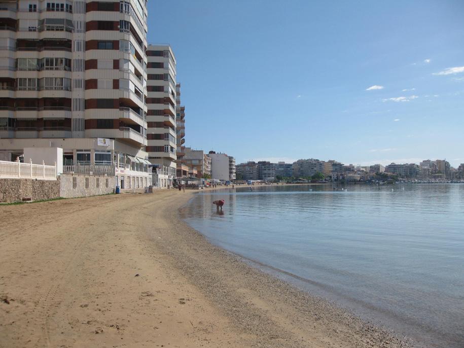 Пляж-порт Асекьон, Торревьеха