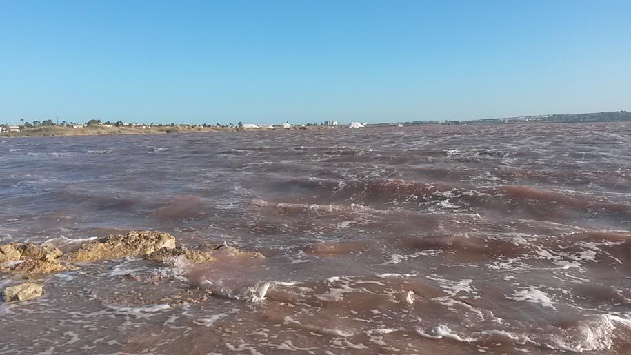 Соленое (розовое) озеро, Торревьеха